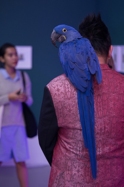 Parrot. Andy Warhol: Social Circus exhibition (2016). Gillman Barracks, Singapore. Courtesy of The Ryan Foundation.