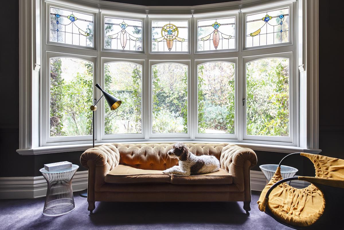 Photo: Nicole England for Resident Dog. Courtesy of Thames and Hudson.