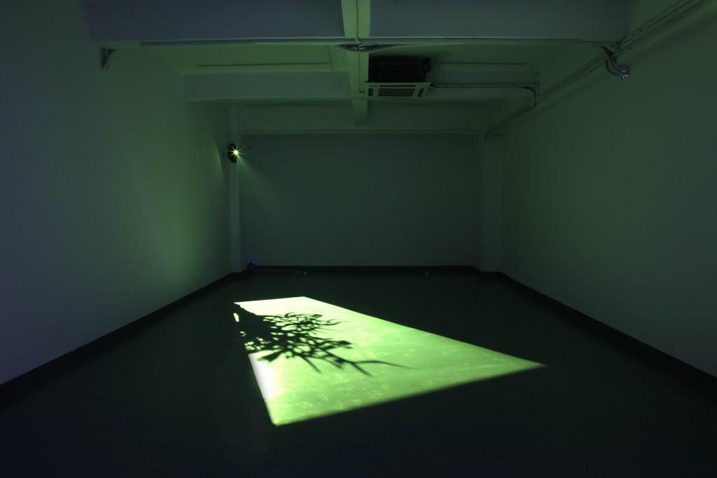 Paul Chan,《2nd Light》, 2006, digital video. Courtesy of David Chau.
