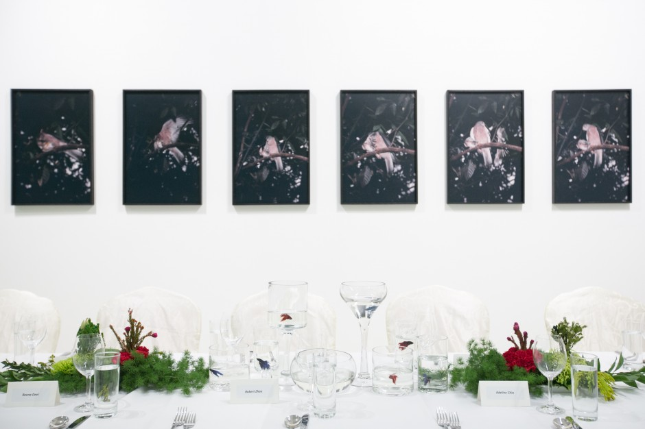 Dinner reception hosted by The Ryan Foundation and works by Robert Zhao Renhui at Christmas Island, Naturally exhibition (2017), ShanghART gallery, Singapore. Courtesy of The Ryan Foundation.